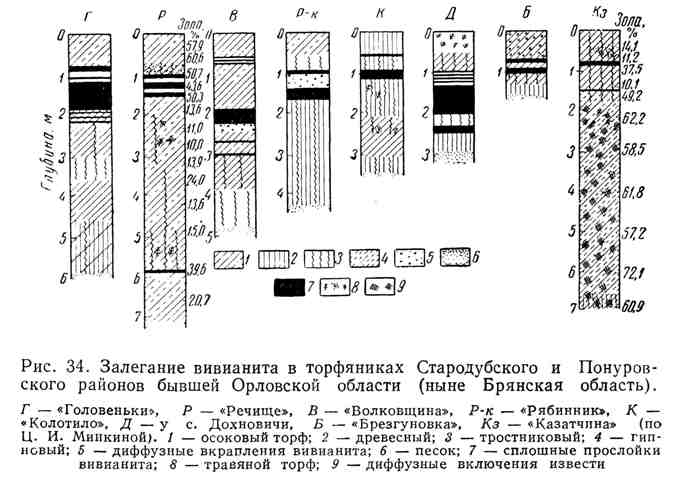 Залегание вивианита в торфяниках Стародубского и Понуровского районов бывшей Орловской области