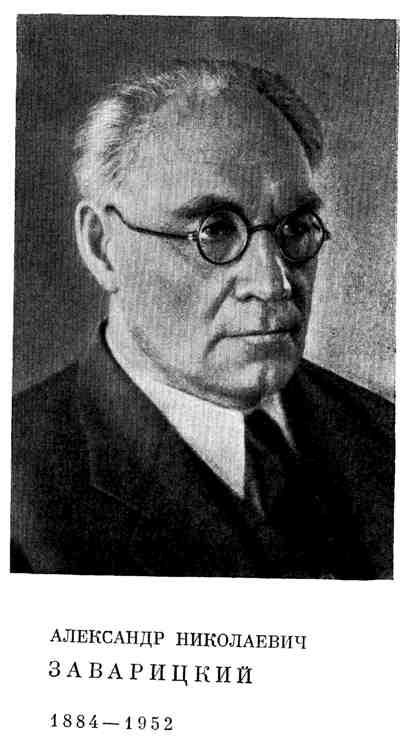 Александр Николаевич Заварицкий