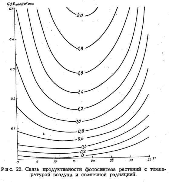 Связь продуктивности фотосинтеза растений с температурой воздуха и солнечной радиацией