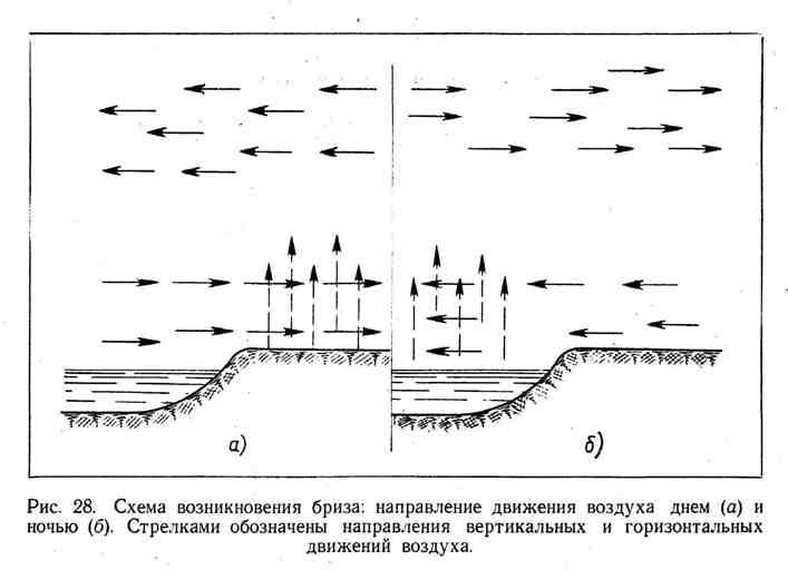 Схема возникновения бриза