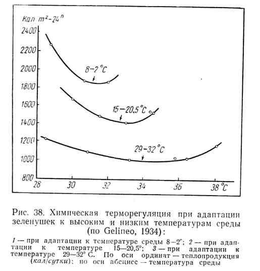 Химическая терморегуляция при адаптации зеленушек к высоким и низким температурам среды