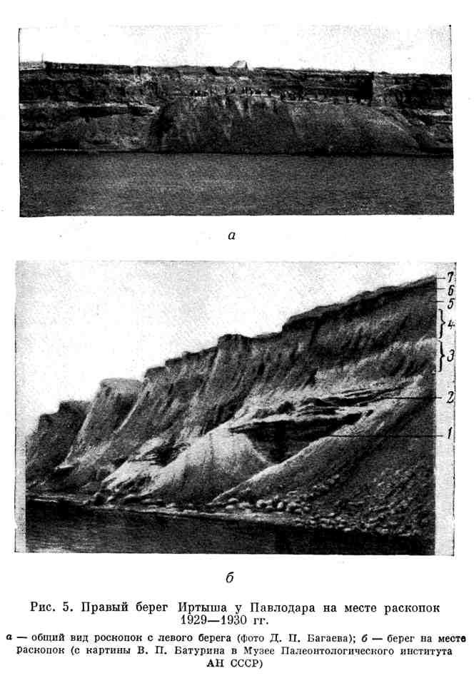 Правый берег Иртыша у Павлодара на месте раскопок 1928-1930 гг.