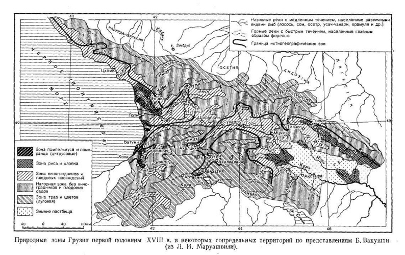 Природные зоны Грузии первой половины XVIII в. и некоторых сопредельных территорий по представлениям Б. Вахушти