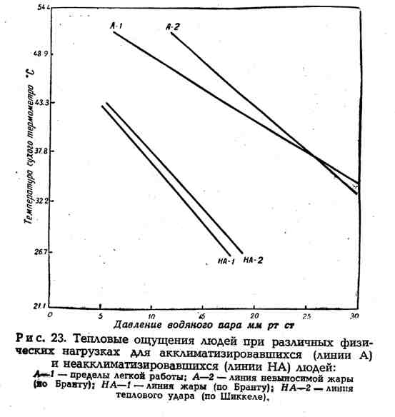 Тепловые ощущения людей при различных физических нагрузках для акклиматизировавшихся