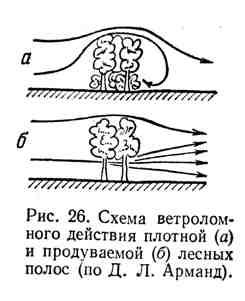 Схема ветроломного действия плотной и продуваемой лесных полос