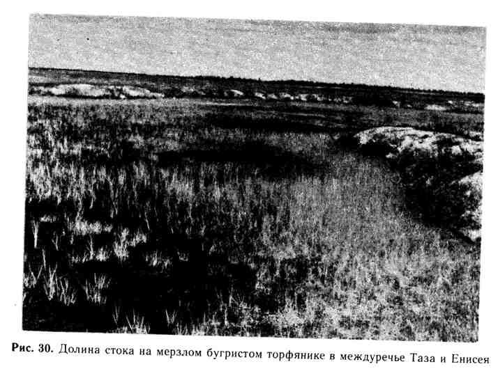 Долина стока на мерзлом бугристом торфянике в междуречье Таза и Енисея