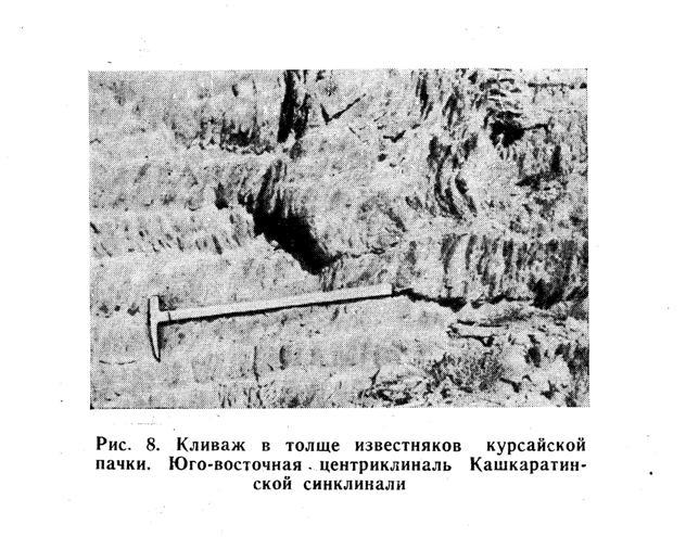 Кливаж в толще известняков курсайской пачки. Юго-восточная центриклиналь Кашкаратинской синклинали