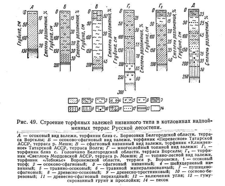 Строение торфяных залежей низинного типа в котловинах надпойменных террас Русской лесостепи