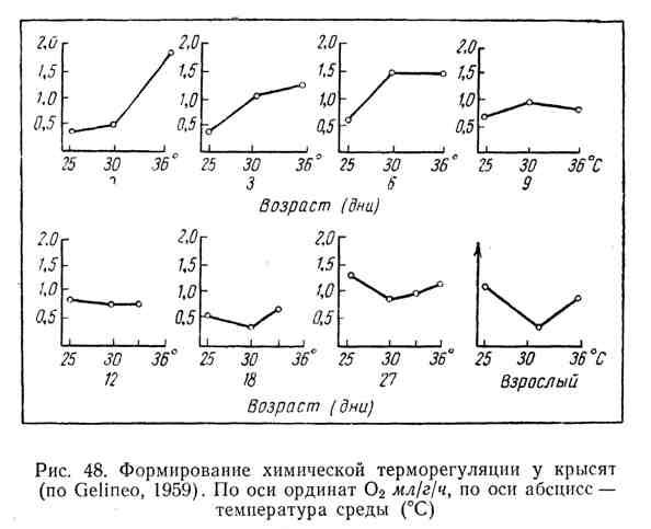 Формирование химической терморегуляции у крысят