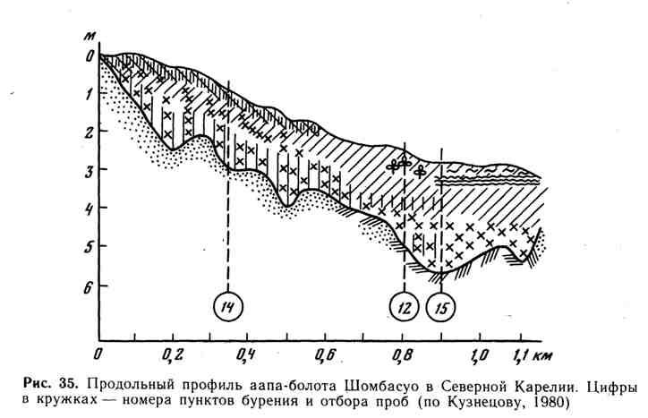 Продольный профиль аапа-болота Шомбасуо в Северной Карелии