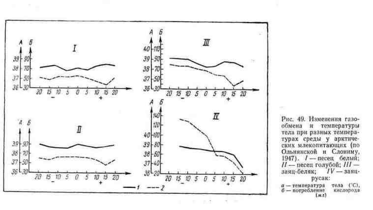 Изменения газообмена и температуры тела при разных температурах среды у арктических млекопитающих