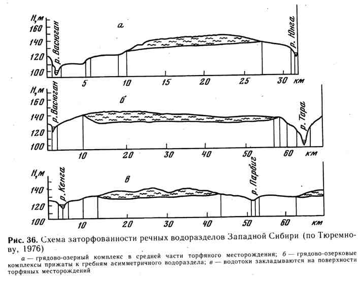 Схема заторфованности речных водоразделов Западной Сибири