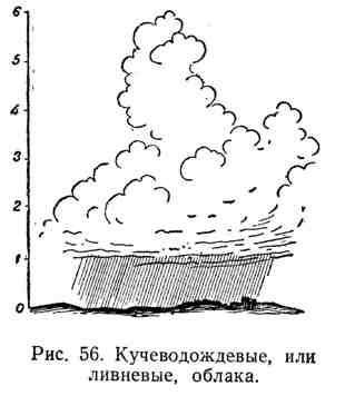 Кучеводождевые, или ливневые облака
