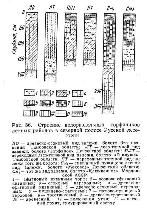 Строение водораздельных торфяников лесных районов в северной полосе Русской лесостепи