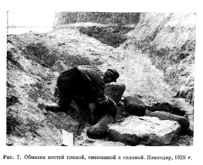Обмазка костей глиной, смешанной с соломой. Павлодар, 1929 г.