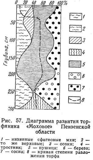 """Диаграмма развития торфяника """"Моховое"""" Пензенской области"""