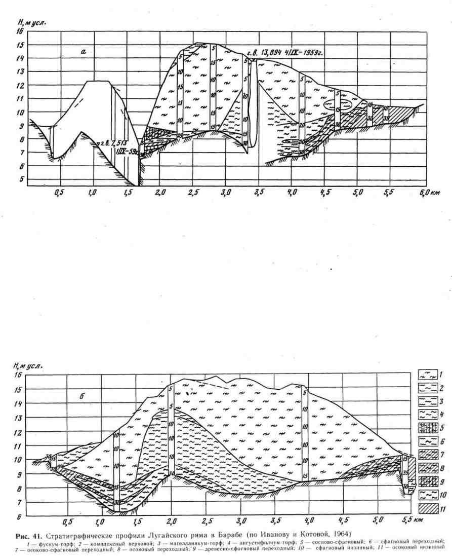 Стратиграфические профили Лугайского ряма в Барабе