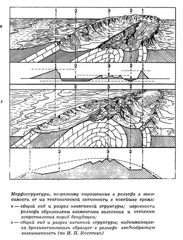 Морфоструктуры, по-разному выраженные в рельефе в зависимости от их тектонической активности