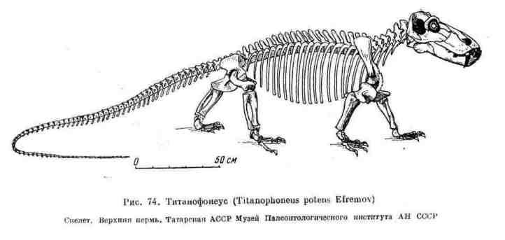 Титанофонеус