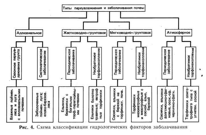 Схема классификации гидрологических факторов заболачивания