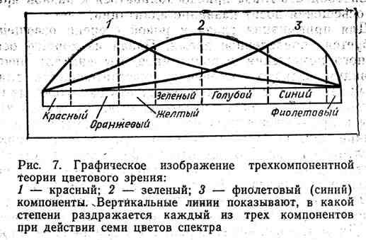 Графическое изображение трёхкомпонентной теории цветового зрения