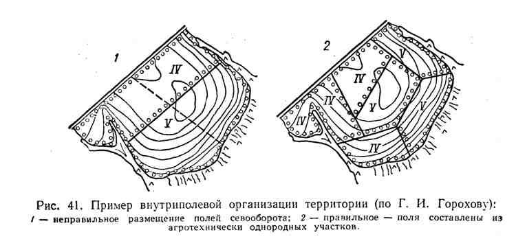 Пример внутриполевой организации территории
