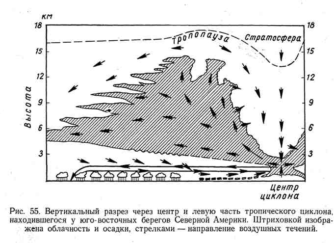 Вертикальный разрез через центр и левую часть тропического циклона, находившегося у юго-восточных берегов Северной Америки