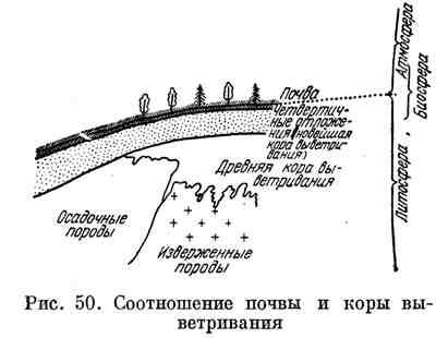 Соотношение почвы и коры выветривания