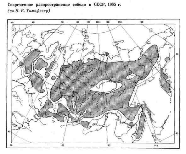 Распространение соболя в СССР в 1965 г.