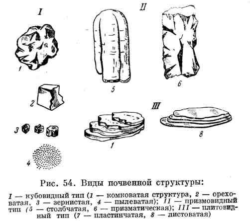 Виды почвенной структуры