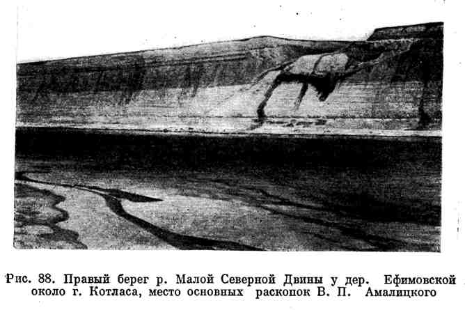 Правый берег р. Малой Северной Двины у дер. Ефимовской около г. Котласа, место основных раскопок В. П. Амалицкого