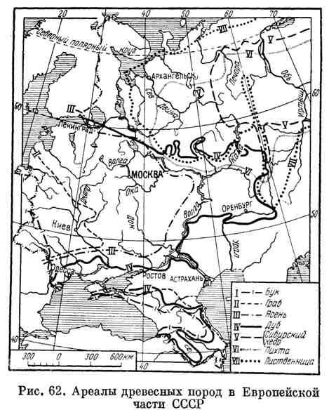 Ареалы древесных пород в Европейской части СССР